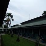 パプアニューギニアで地域活動をする青年海外協力隊の配属先!